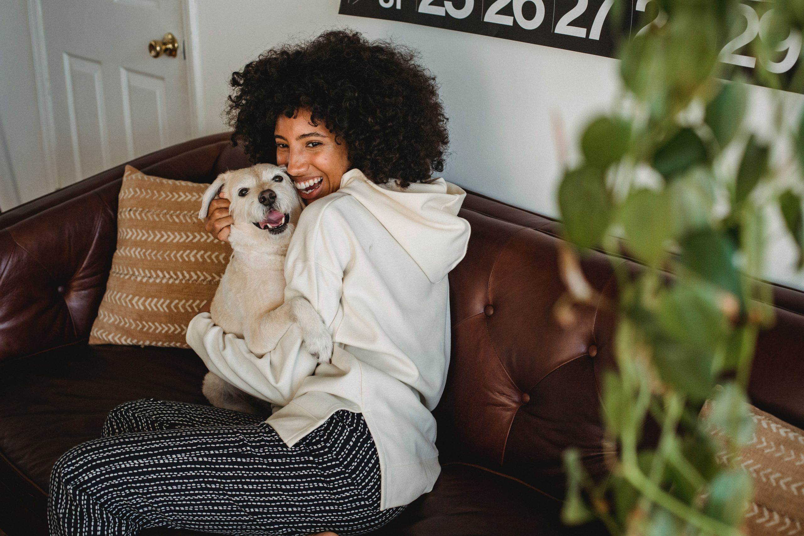 woman hugging dog on couch for Trupanion pet insurance article